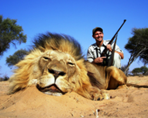Trophy Hunting Fees Do Little to Help Threatened Species, Report Says